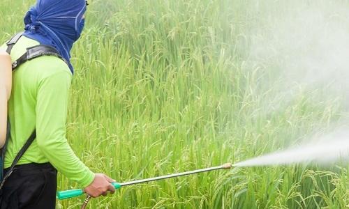 4. reanjoy pesticide
